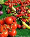 thumb_vegetables_104a25