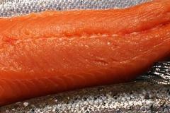 fish_1e5309