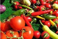 vegetables_104a25