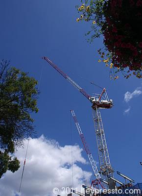 Crane, Finchley