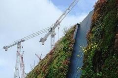 Cranes on the Skyline 2