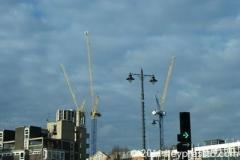 Yellow Cranes