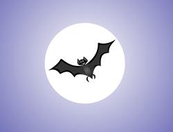 fullmoon_bat_halloween_image