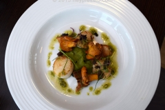 pan_fried_scallops_fishermans_wharf